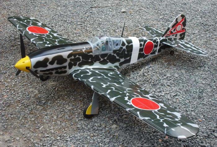 1 Kawasaki HiEN (TONY)